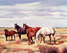 Equestrian Acrylic Painting by Doreen Irwin