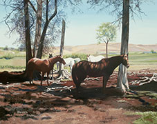 Equine Oil Painting by Doreen Irwin