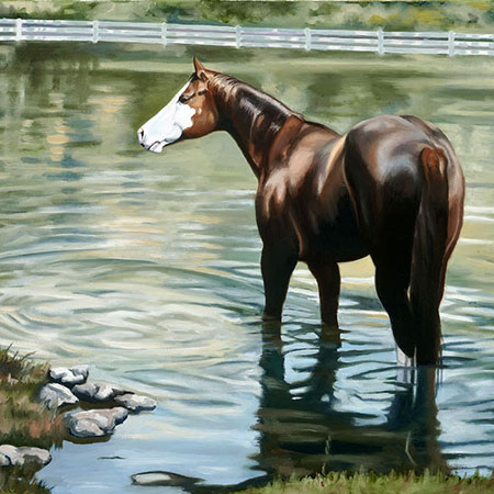 Equestrian Oil Painting 'Cooling Off' by Doreen Irwin